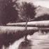 La Fleuve I by Paul Powis