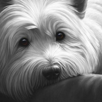 Dog Tired West Highland Terrier