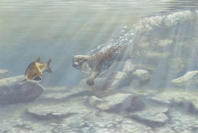 Trivial Pursuit - Otter & Fish