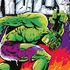 The Invincible Hulk Special #1 by Stan Lee  Marvel Comics