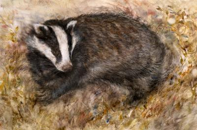 Badgers Rest