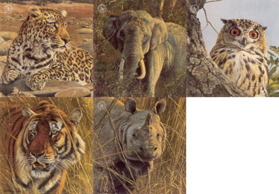 Five Faces Of India (Set of 5)