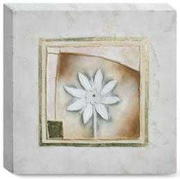 Petit Fleur I - Box Canvas