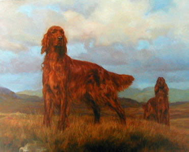 Teamwork - Irish Setter