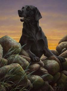 Game Boy - Black Labrador