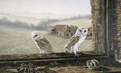 Welcome Return - Barn Owls