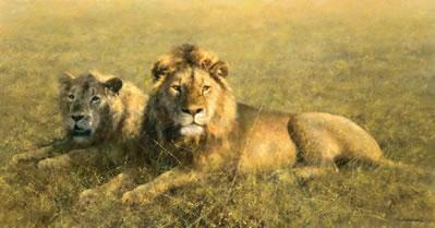 Serengeti Friends