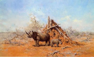 Tsavo Rhino