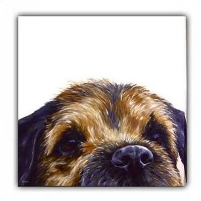 Border (Canvas) - Border Terrier