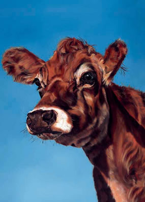 Cappuccino - Cow