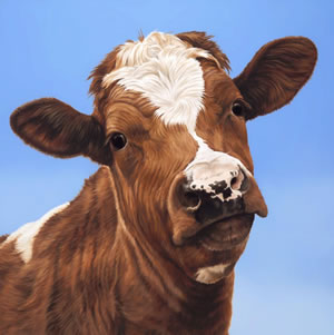 How Now, Brown Cow