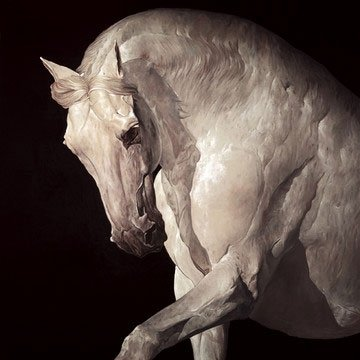 Equus by Huw Williams